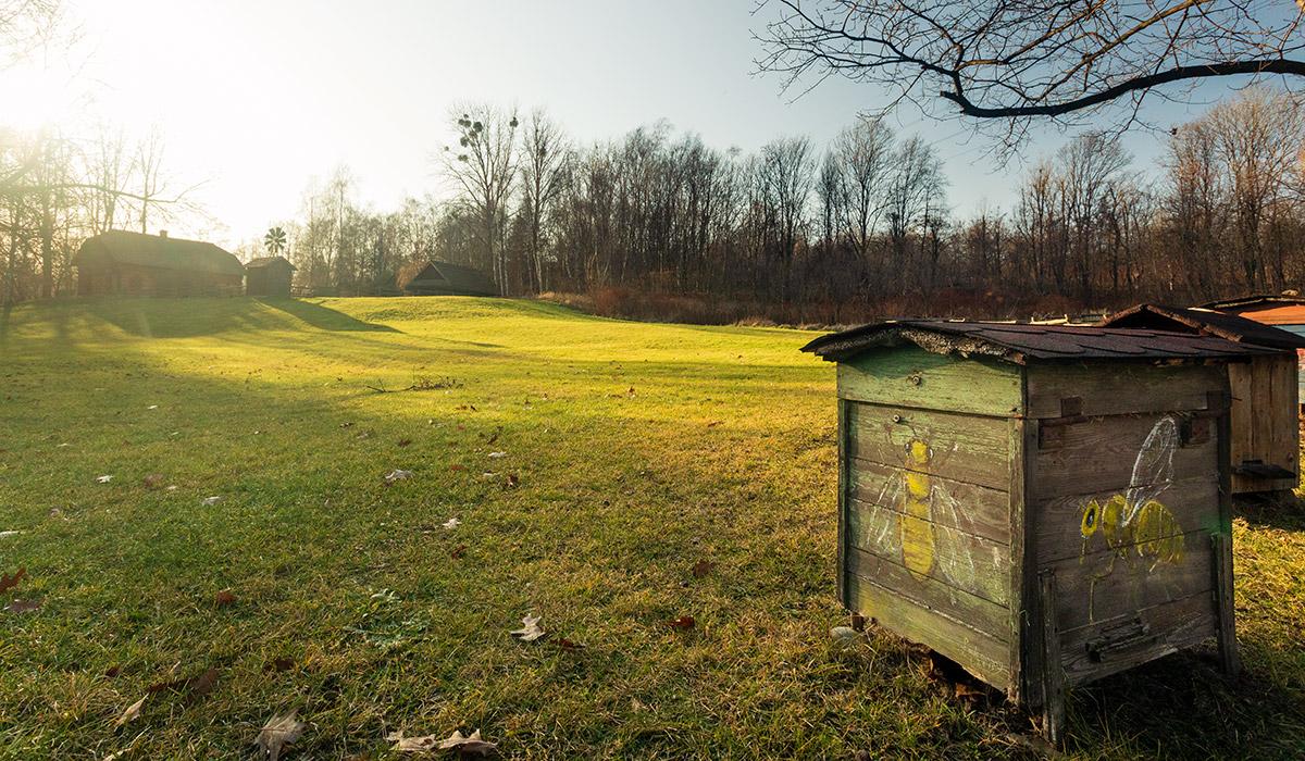 Łąka w skansenie - Skansen w Chorzowie